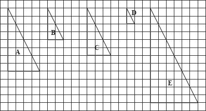 Unit 7 Section 3 : Enlargements